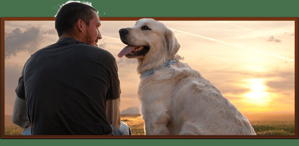 Vet Clinic in Easley & Powdersville, SC | Paw Prints Animal